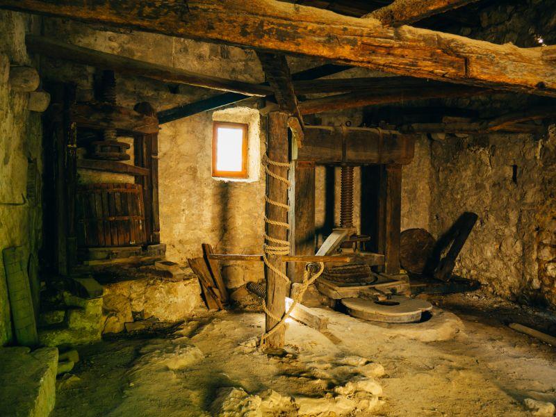 Why visit Istria: Wooden Press Olives, Croatia